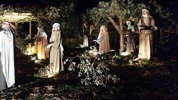 Non è fortuna, è amore - basilica di Assisi a Natale